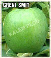 Prodaja sadnica jabuka Greni smit