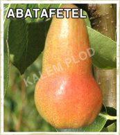 Prodaja sadnica kruska Abatafetel