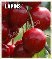 Sadnice tresnja Lapins
