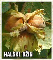 Sadnice voca lesnik Halski Dzin