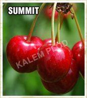 Sadnice voca tresnja Summit