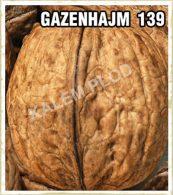 Prodaja sadnica orah Gazenhajm 139