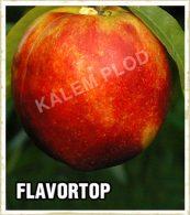 Vocne sadnice nektarina Flavortop