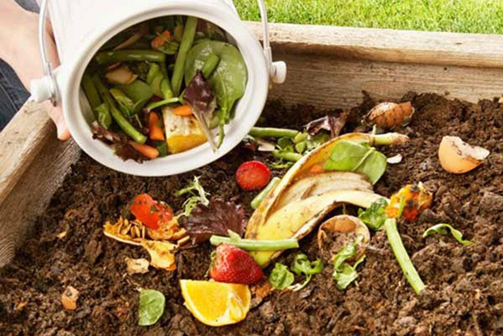 Kompost za vocne sadnice